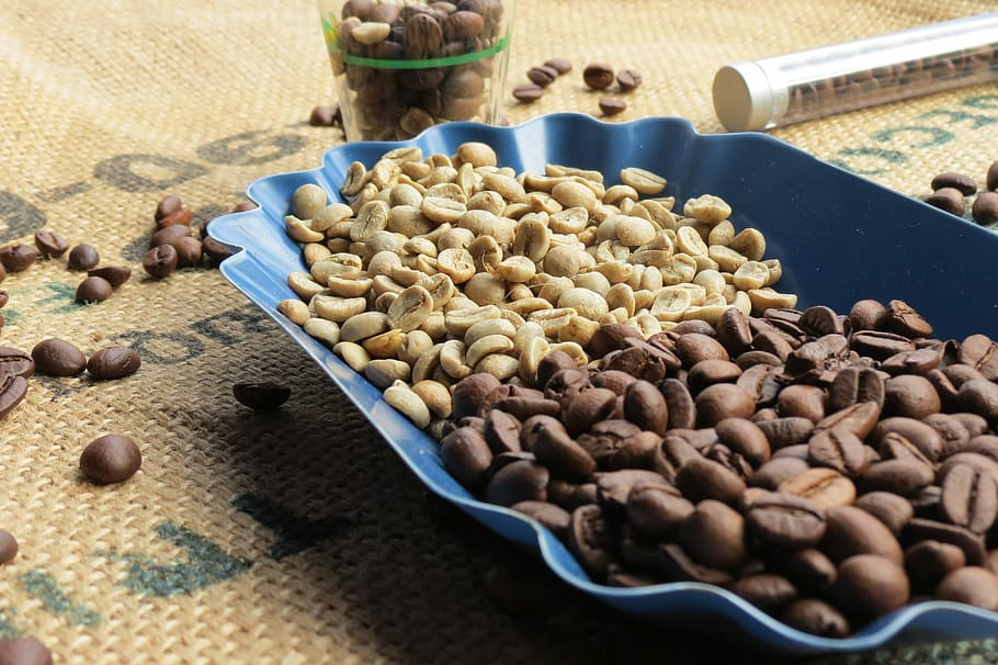 Comparaison entre café vert et café torréfié